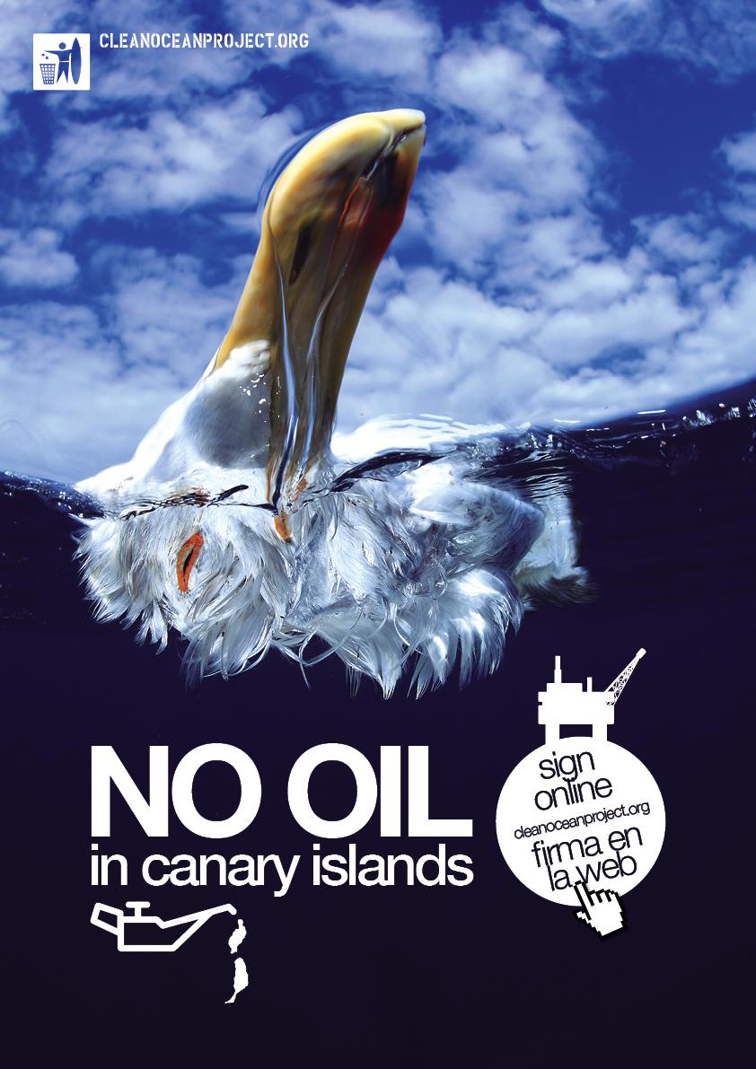 oil_bird_web.jpg
